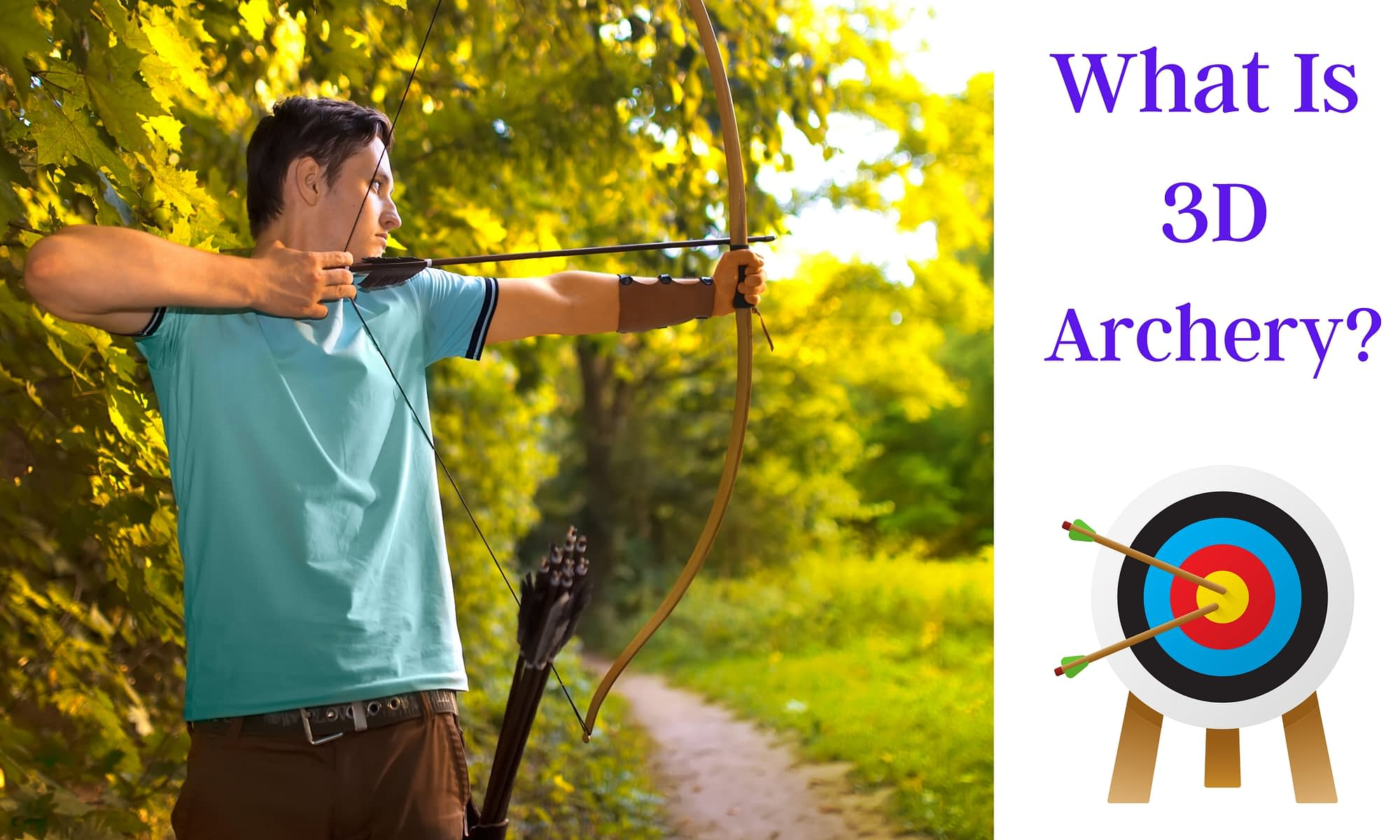 What is 3D Archery